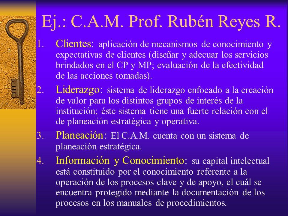 Ej.: C.A.M. Prof. Rubén Reyes R.