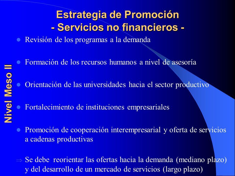 Estrategia de Promoción - Servicios no financieros -