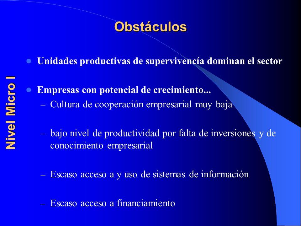 Obstáculos Nivel Micro I