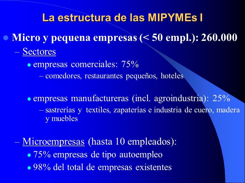 La estructura de las MIPYMEs I