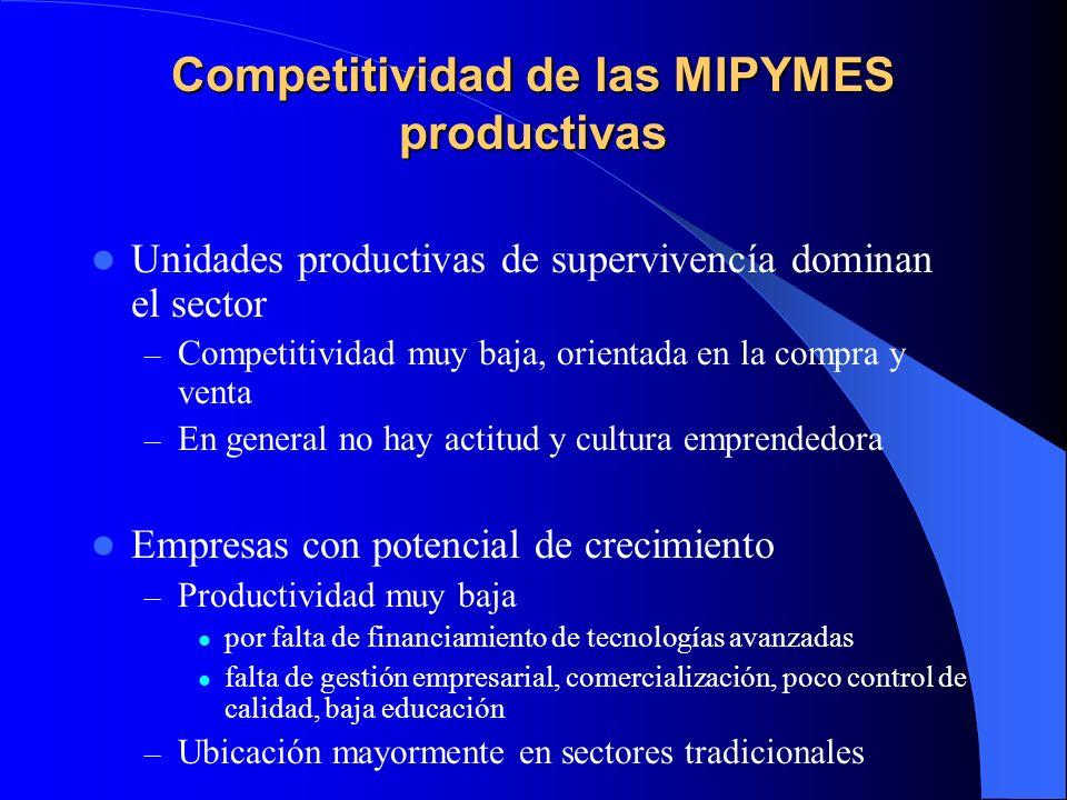 Competitividad de las MIPYMES productivas