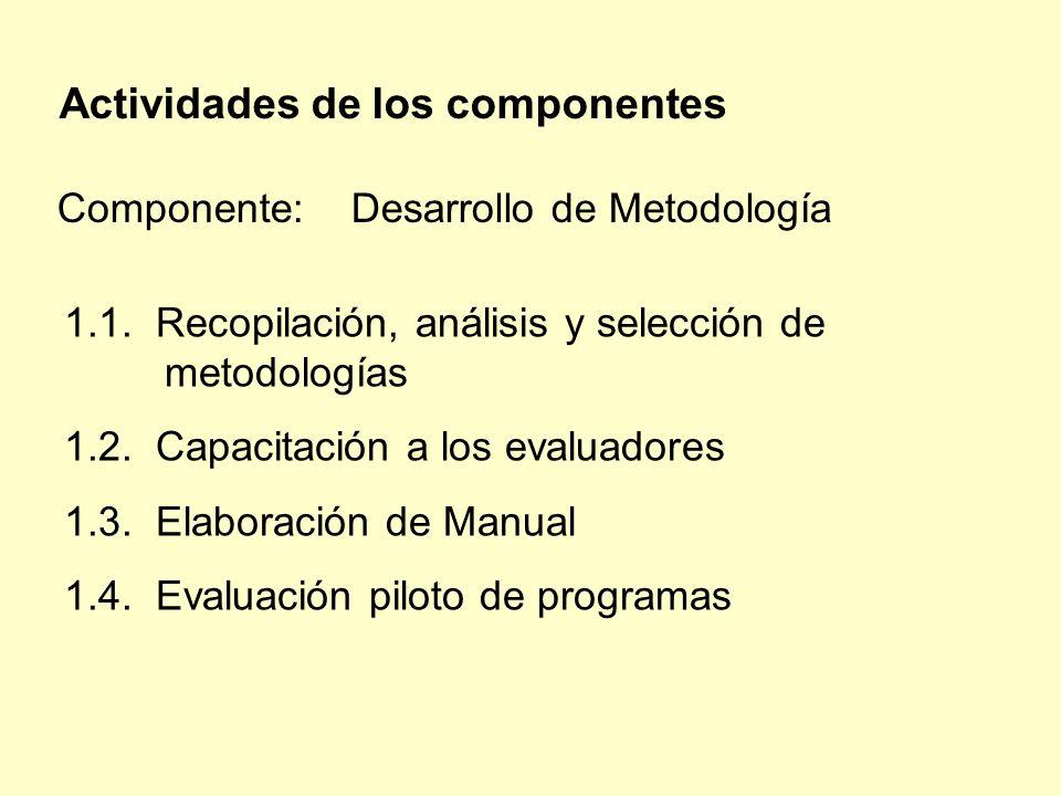 Actividades de los componentes