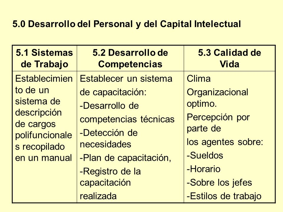 5.2 Desarrollo de Competencias