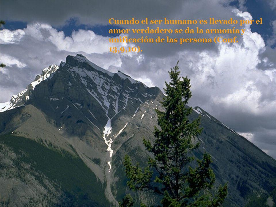 Cuando el ser humano es llevado por el amor verdadero se da la armonía y unificación de las persona (Conf.