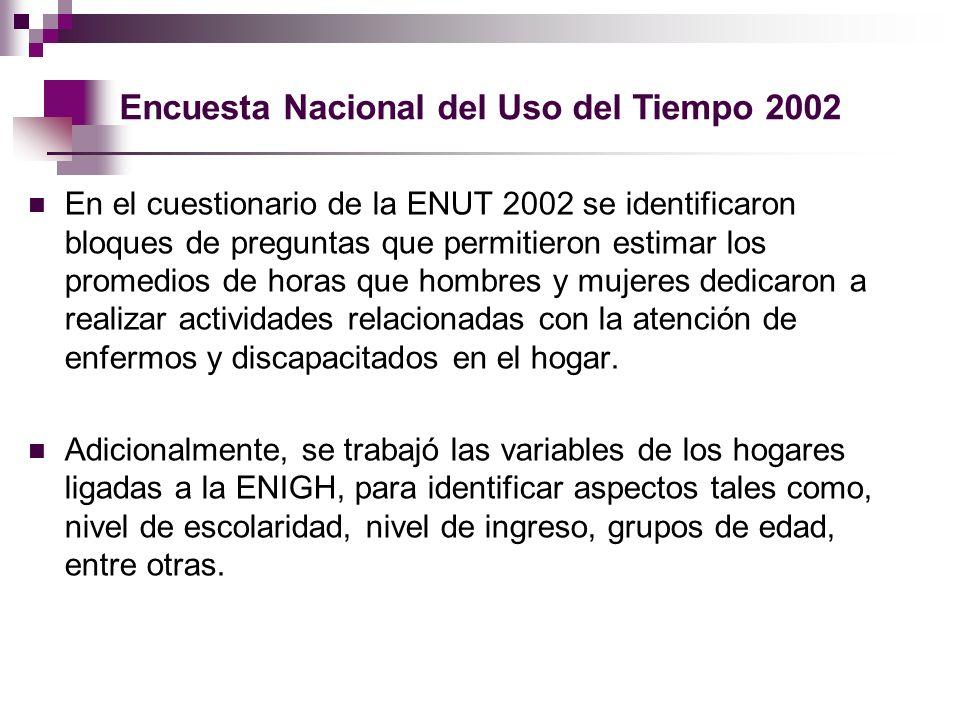 Encuesta Nacional del Uso del Tiempo 2002