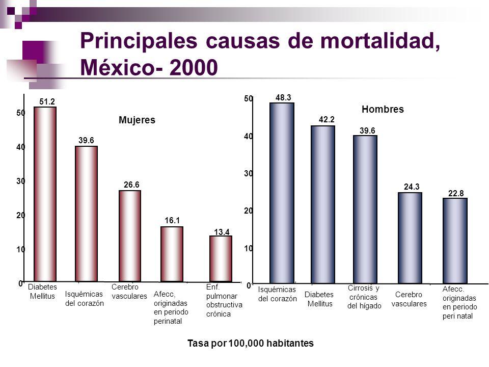 Principales causas de mortalidad, México- 2000