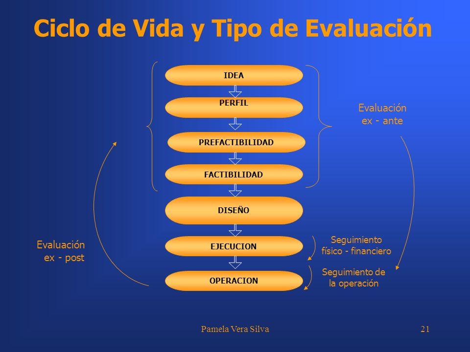 Ciclo de Vida y Tipo de Evaluación