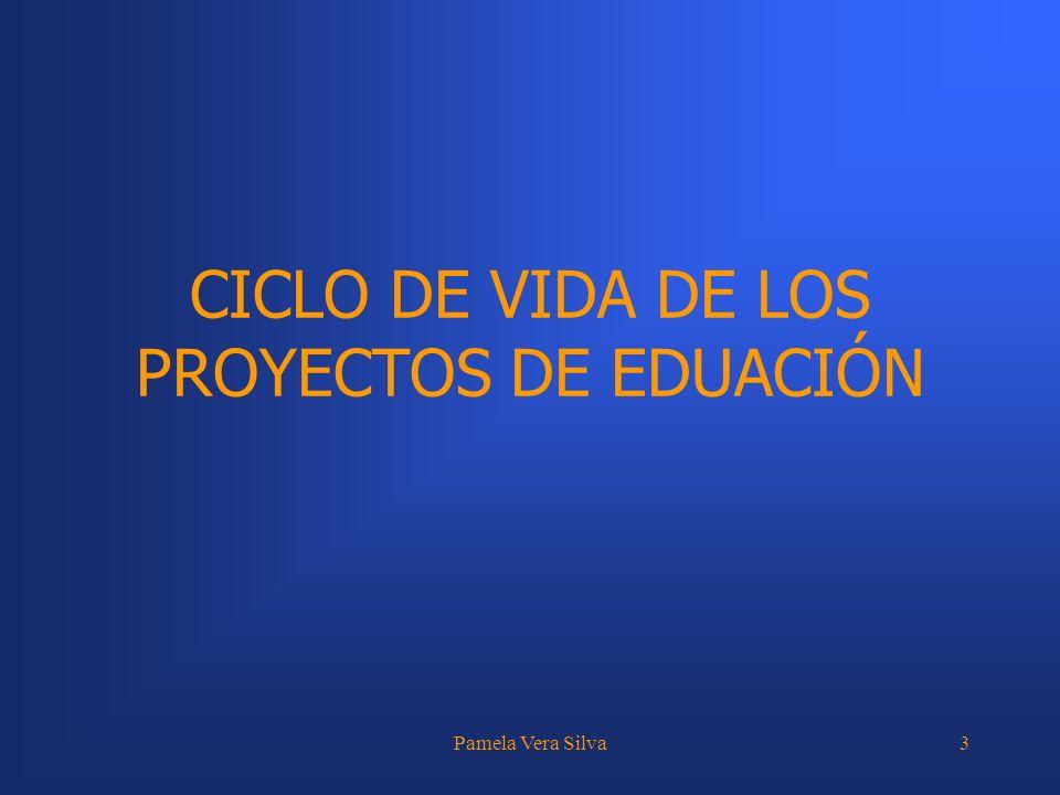 CICLO DE VIDA DE LOS PROYECTOS DE EDUACIÓN