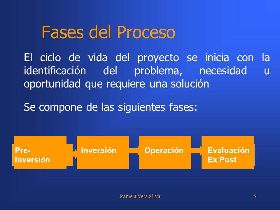 Fases del Proceso El ciclo de vida del proyecto se inicia con la identificación del problema, necesidad u oportunidad que requiere una solución.