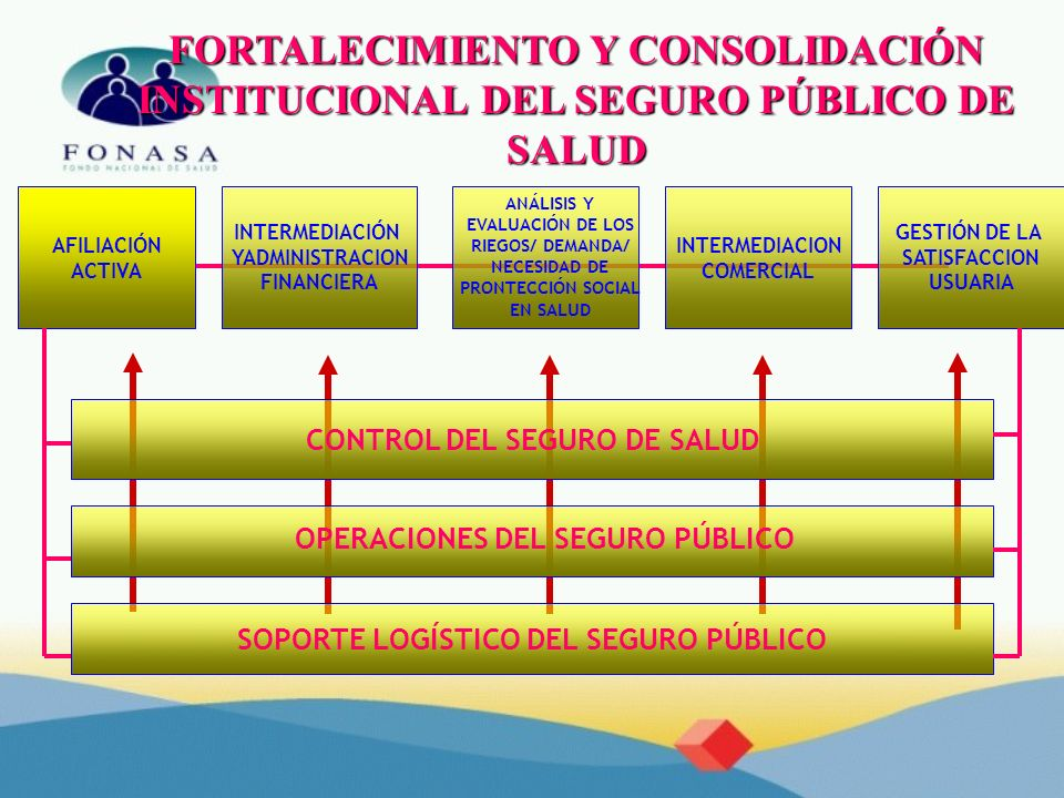 FORTALECIMIENTO Y CONSOLIDACIÓN INSTITUCIONAL DEL SEGURO PÚBLICO DE SALUD