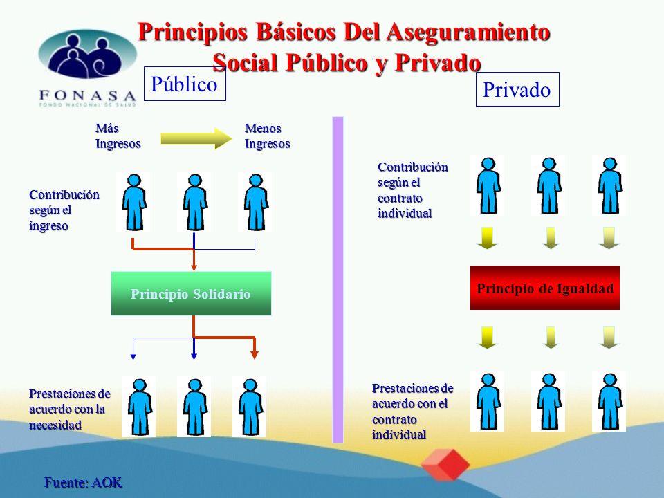 Principios Básicos Del Aseguramiento Social Público y Privado