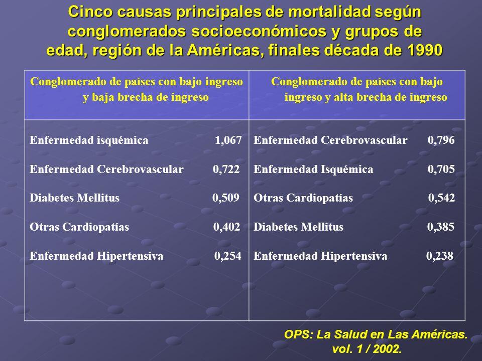 Cinco causas principales de mortalidad según conglomerados socioeconómicos y grupos de edad, región de la Américas, finales década de 1990