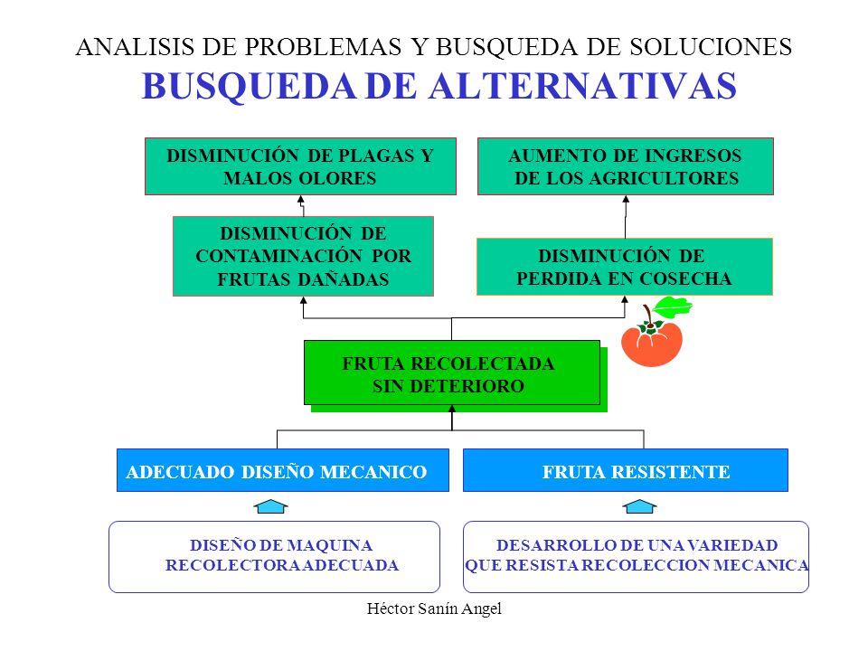ANALISIS DE PROBLEMAS Y BUSQUEDA DE SOLUCIONES BUSQUEDA DE ALTERNATIVAS
