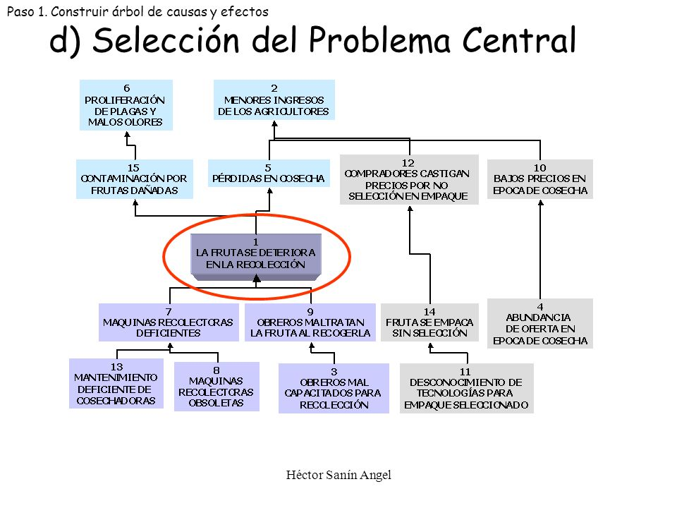 d) Selección del Problema Central