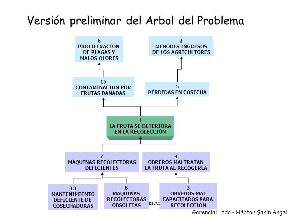 Versión preliminar del Arbol del Problema