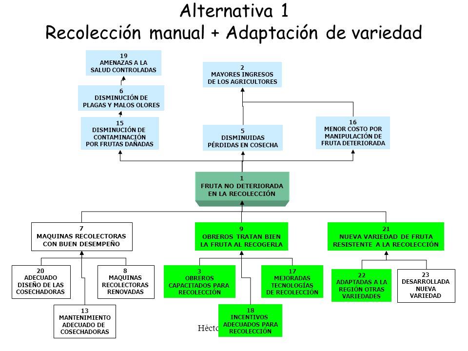 Alternativa 1 Recolección manual + Adaptación de variedad