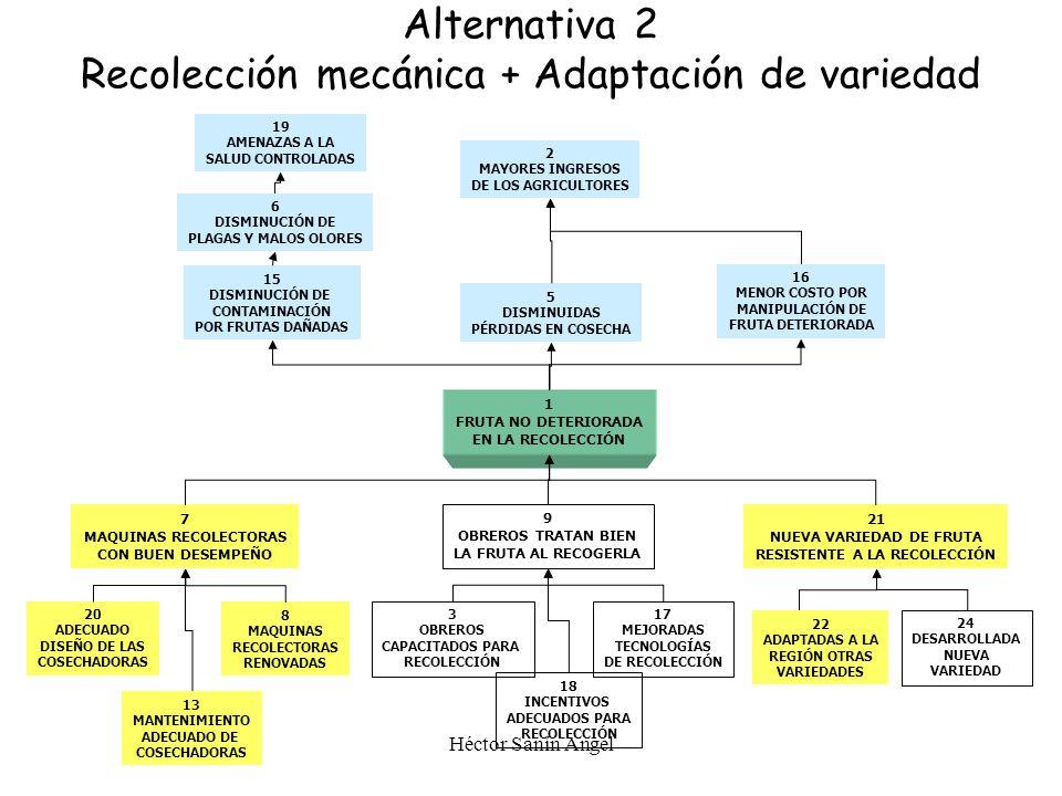 Alternativa 2 Recolección mecánica + Adaptación de variedad