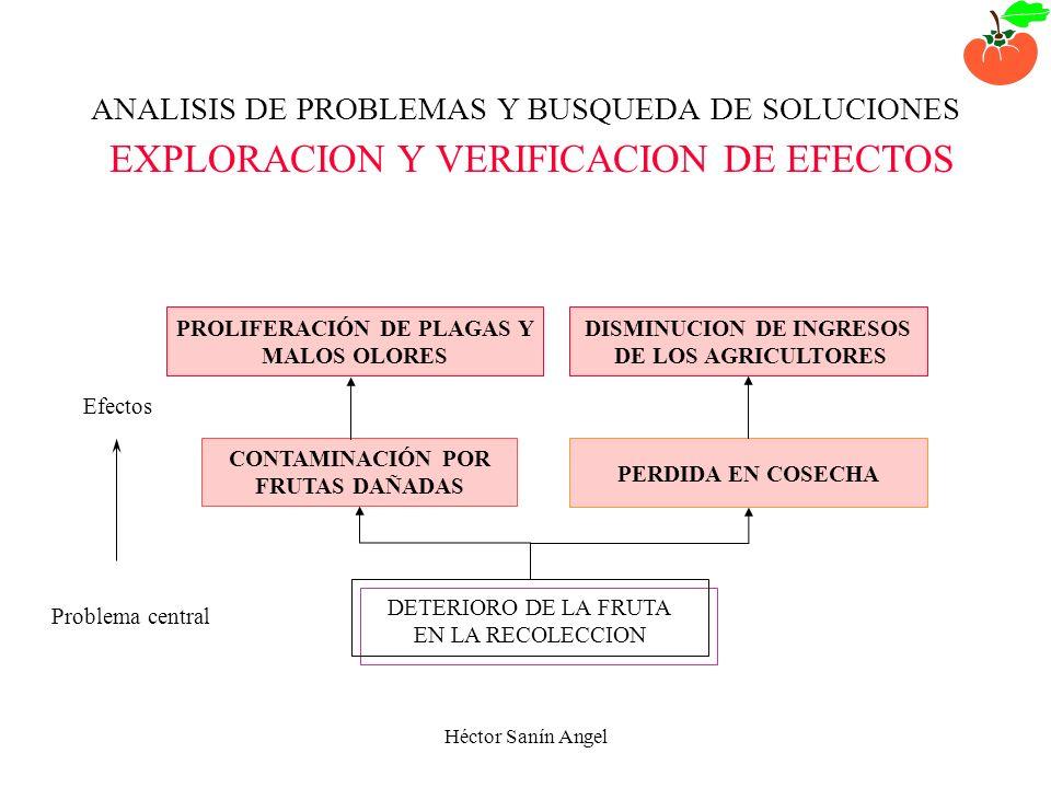 PROLIFERACIÓN DE PLAGAS Y DISMINUCION DE INGRESOS