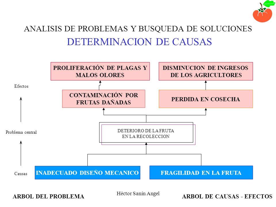 ANALISIS DE PROBLEMAS Y BUSQUEDA DE SOLUCIONES DETERMINACION DE CAUSAS