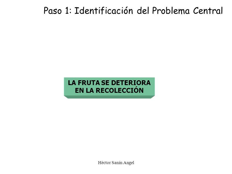 Paso 1: Identificación del Problema Central