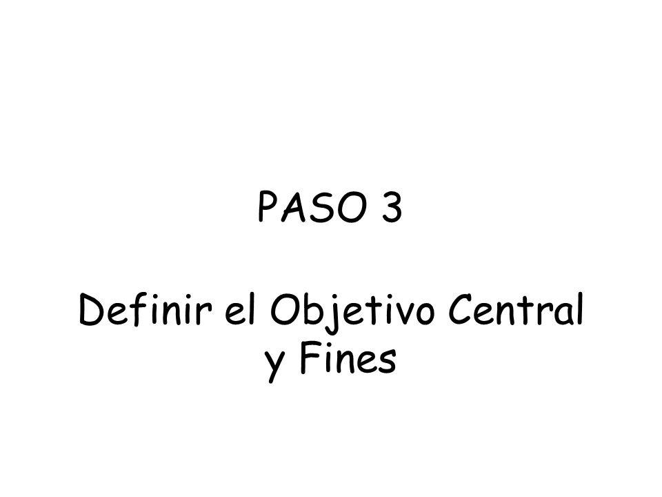 Definir el Objetivo Central y Fines