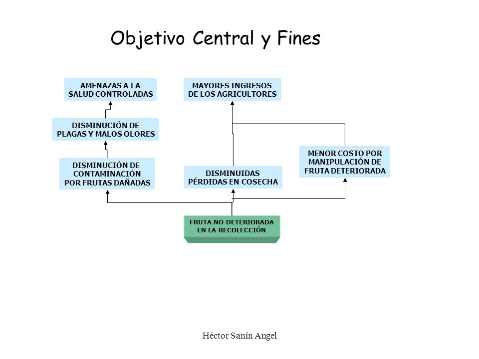 Objetivo Central y Fines
