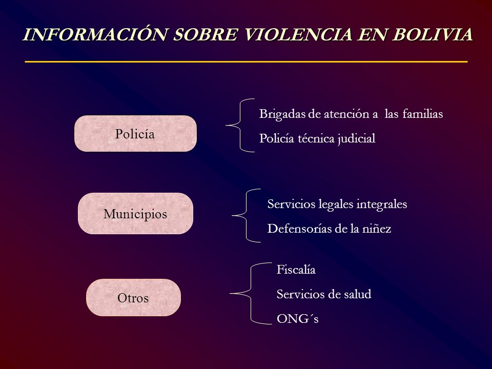 INFORMACIÓN SOBRE VIOLENCIA EN BOLIVIA