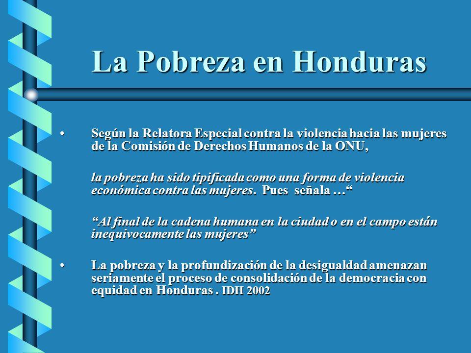 La Pobreza en Honduras Según la Relatora Especial contra la violencia hacia las mujeres de la Comisión de Derechos Humanos de la ONU,