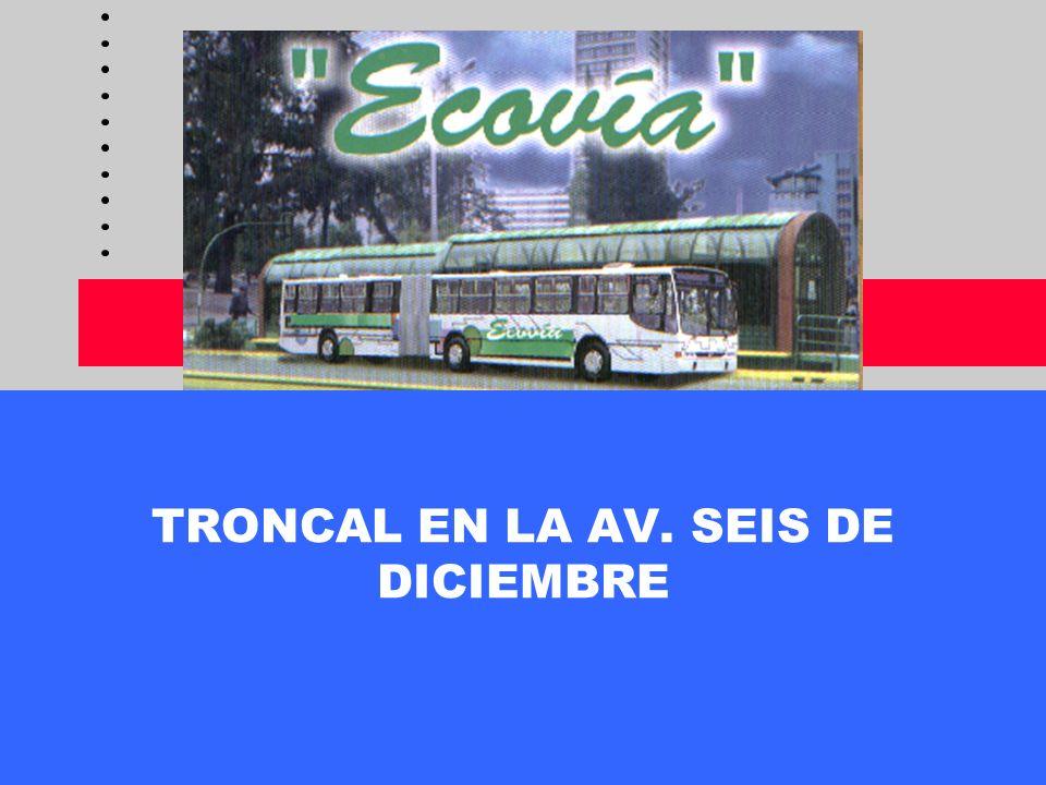 TRONCAL EN LA AV. SEIS DE DICIEMBRE