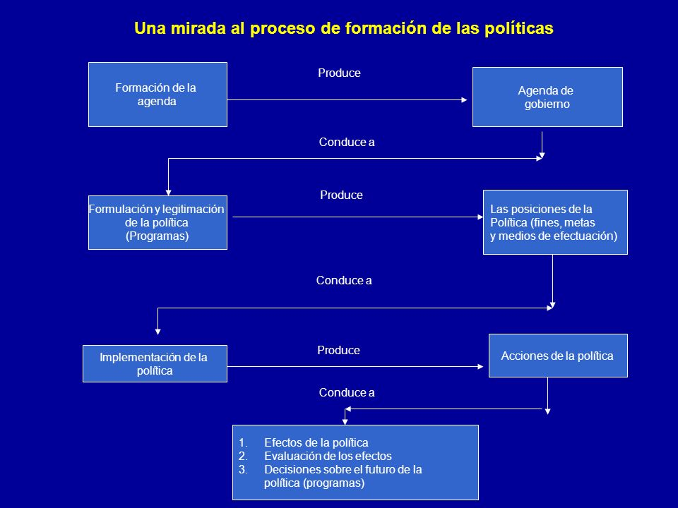 Una mirada al proceso de formación de las políticas