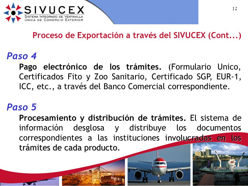 Paso 4 Paso 5 Proceso de Exportación a través del SIVUCEX (Cont...)