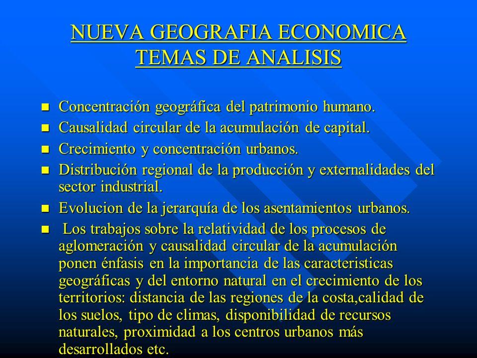 NUEVA GEOGRAFIA ECONOMICA TEMAS DE ANALISIS