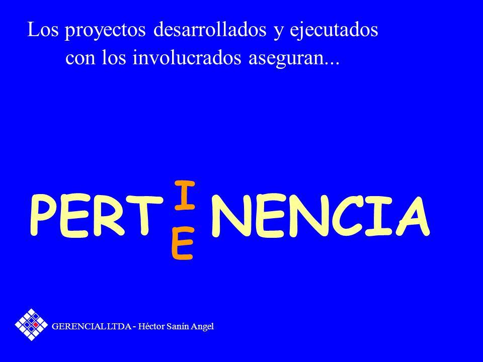 PERT NENCIA I E Los proyectos desarrollados y ejecutados