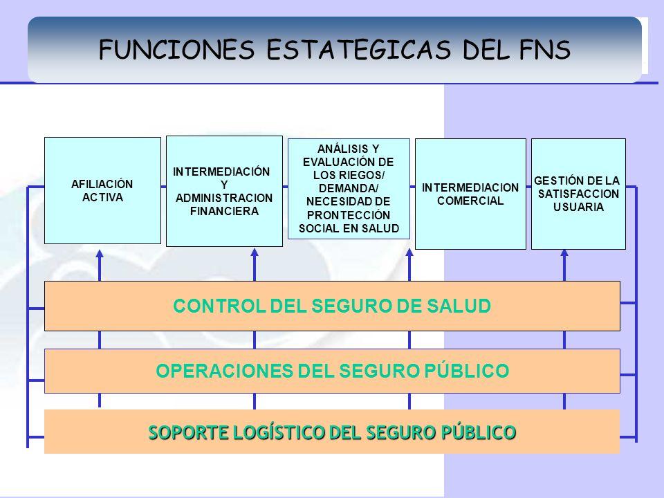 FUNCIONES ESTATEGICAS DEL FNS