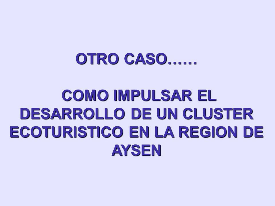 OTRO CASO…… COMO IMPULSAR EL DESARROLLO DE UN CLUSTER ECOTURISTICO EN LA REGION DE AYSEN