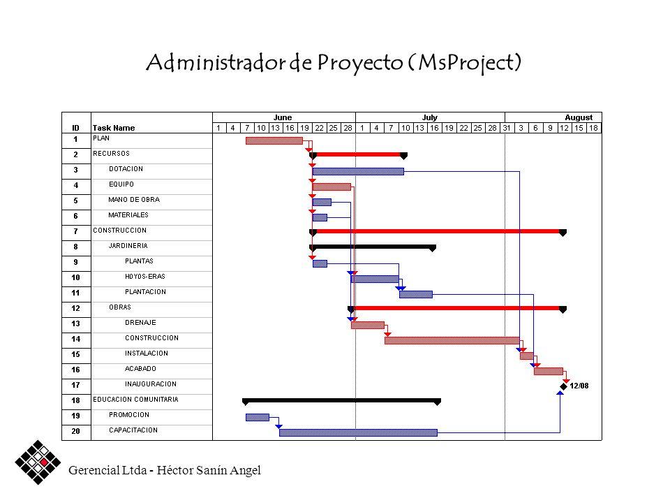 Administrador de Proyecto (MsProject)