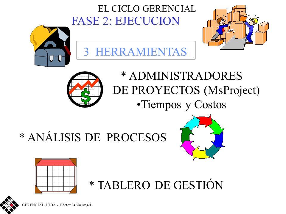 DE PROYECTOS (MsProject)