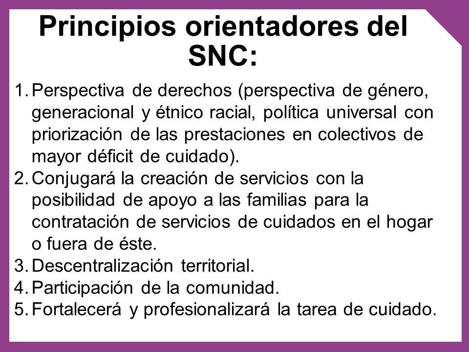 Principios orientadores del SNC: