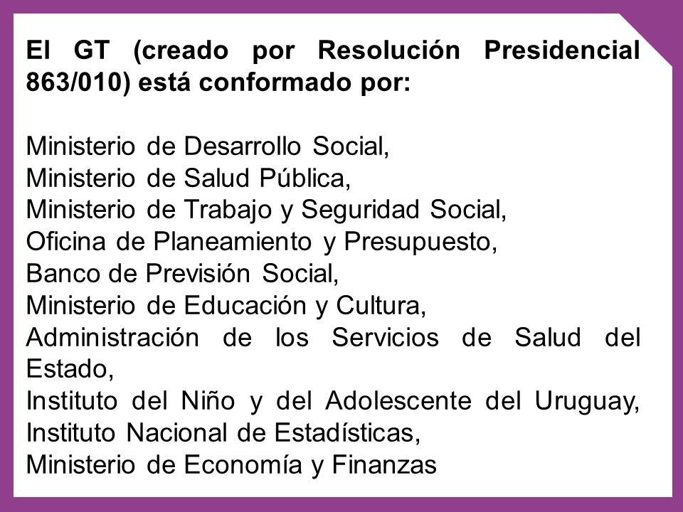 El GT (creado por Resolución Presidencial 863/010) está conformado por: