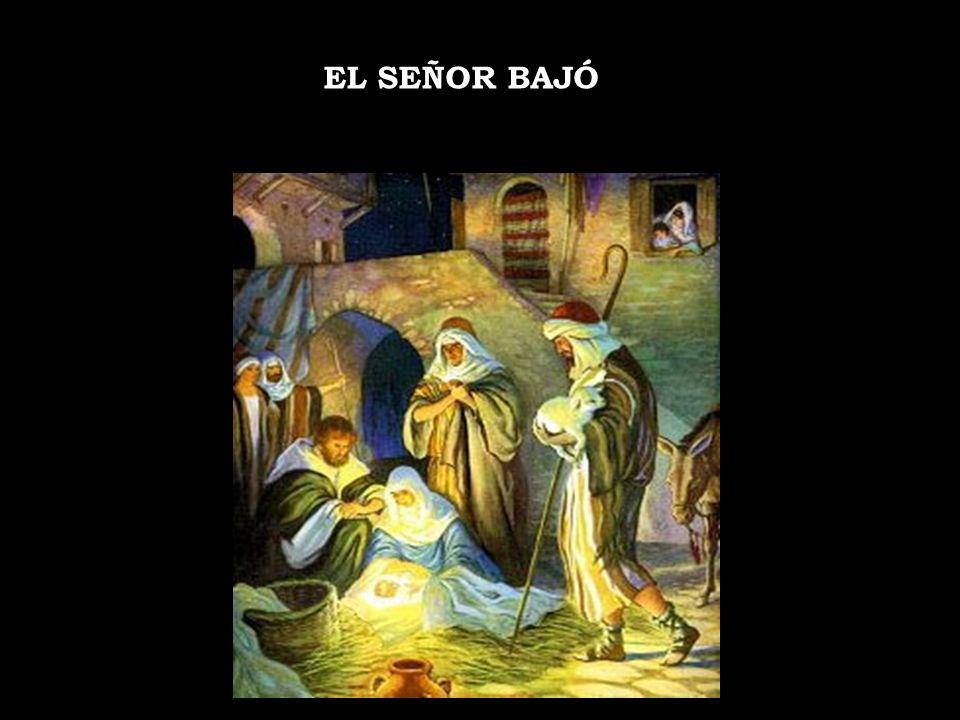 EL SEÑOR BAJÓ