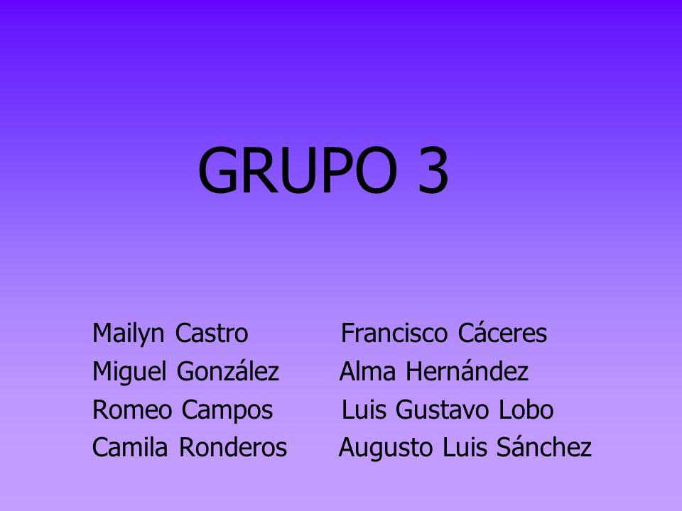 GRUPO 3 Mailyn Castro Francisco Cáceres Miguel González Alma Hernández