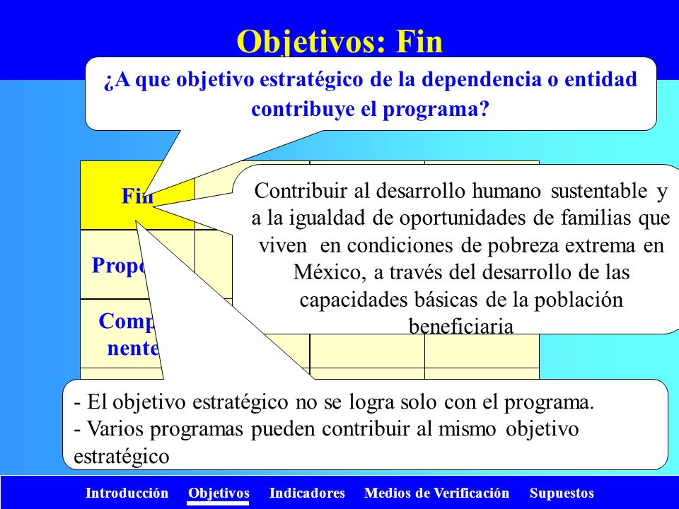 Objetivos: Fin ¿A que objetivo estratégico de la dependencia o entidad contribuye el programa Fin.