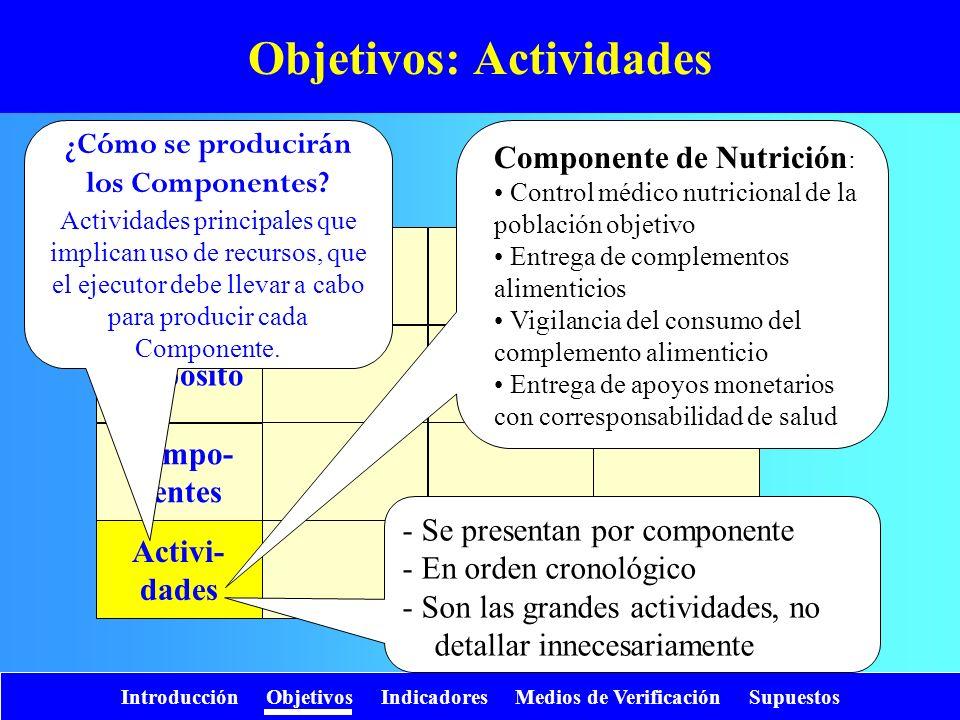 Objetivos: Actividades