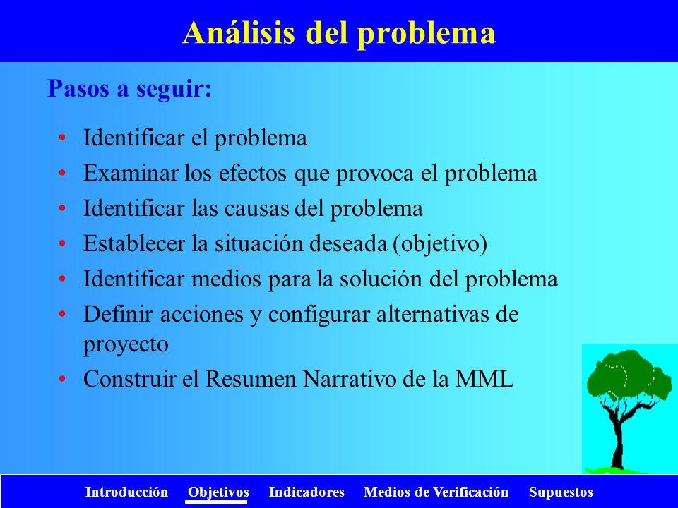 Análisis del problema Pasos a seguir: Identificar el problema