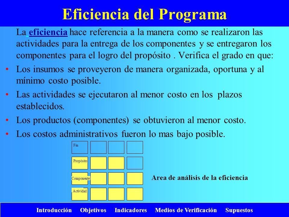 Eficiencia del Programa