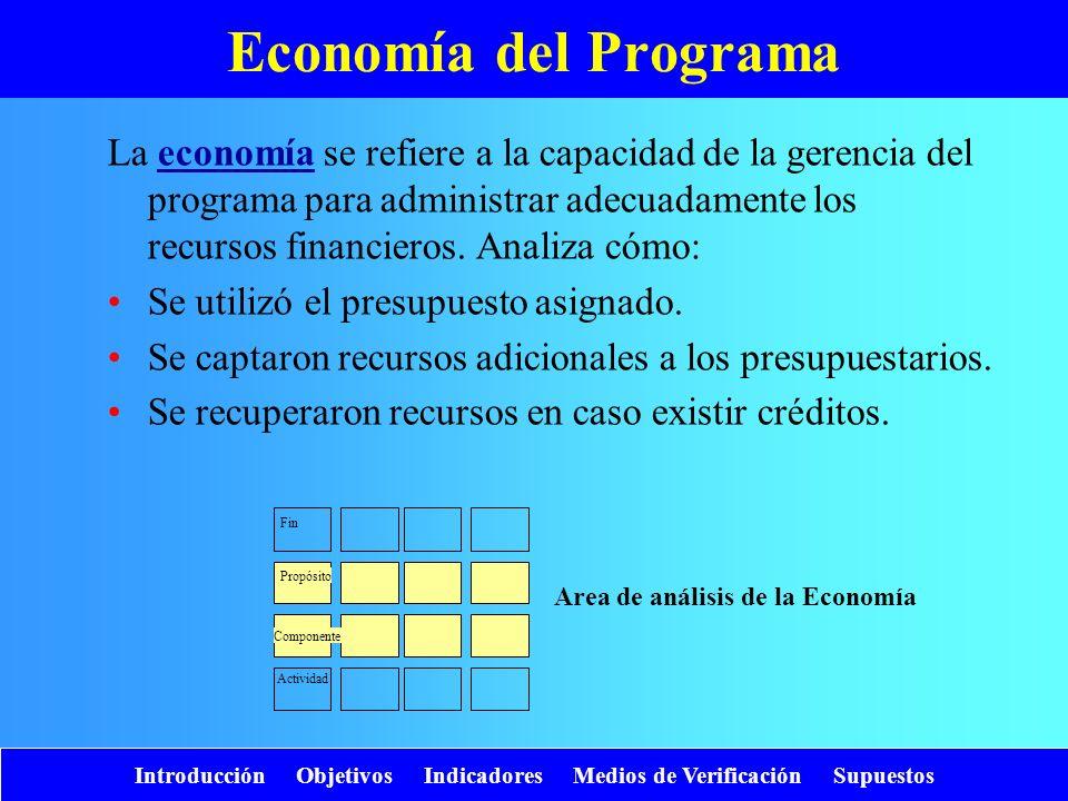 Area de análisis de la Economía