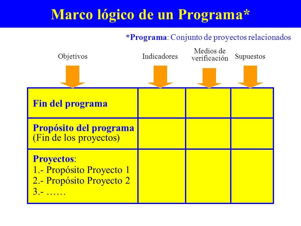 Marco lógico de un Programa*