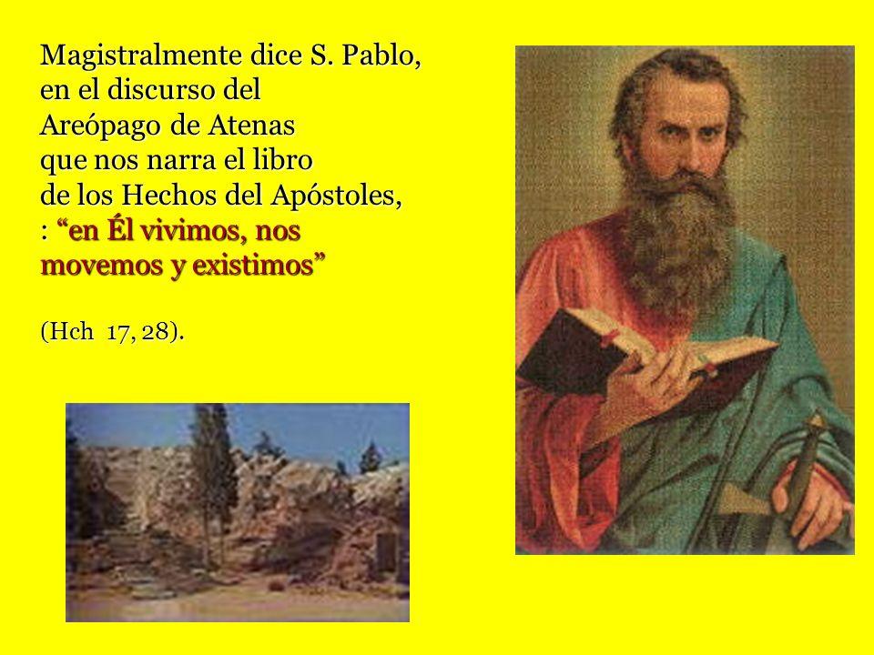 Magistralmente dice S. Pablo, en el discurso del Areópago de Atenas