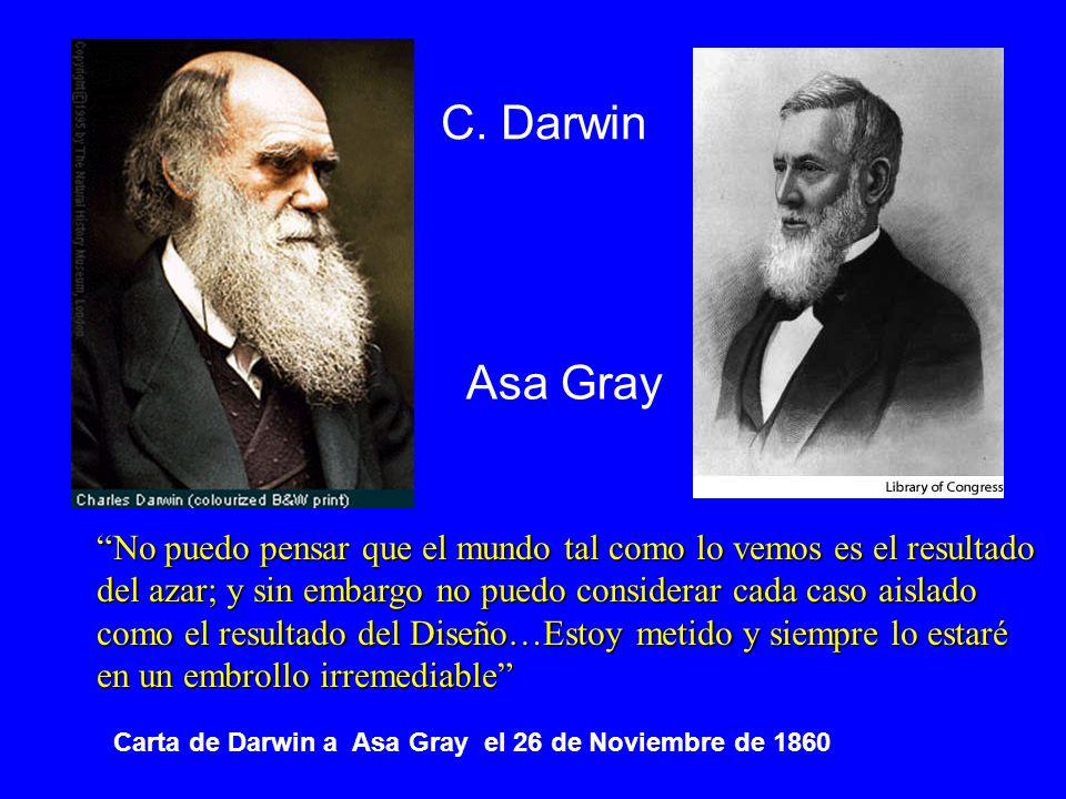 C. Darwin Asa Gray. No puedo pensar que el mundo tal como lo vemos es el resultado. del azar; y sin embargo no puedo considerar cada caso aislado.