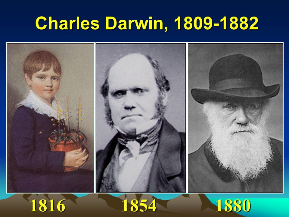 Charles Darwin, 1809-1882 1816 1854 1880